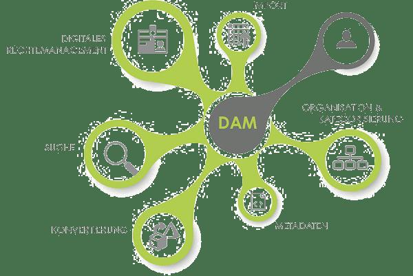 Darstellung der DAM United Services