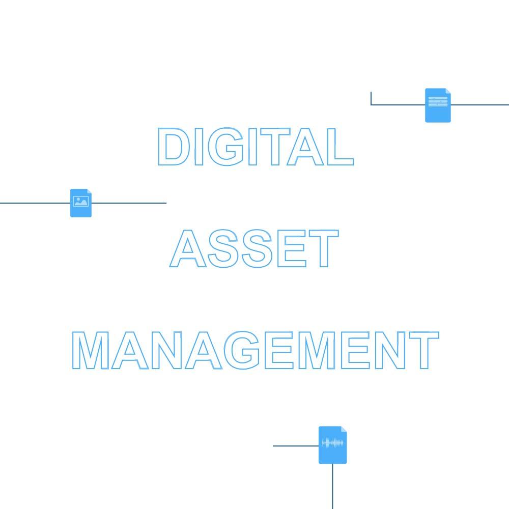 Digital Asset Management Icon